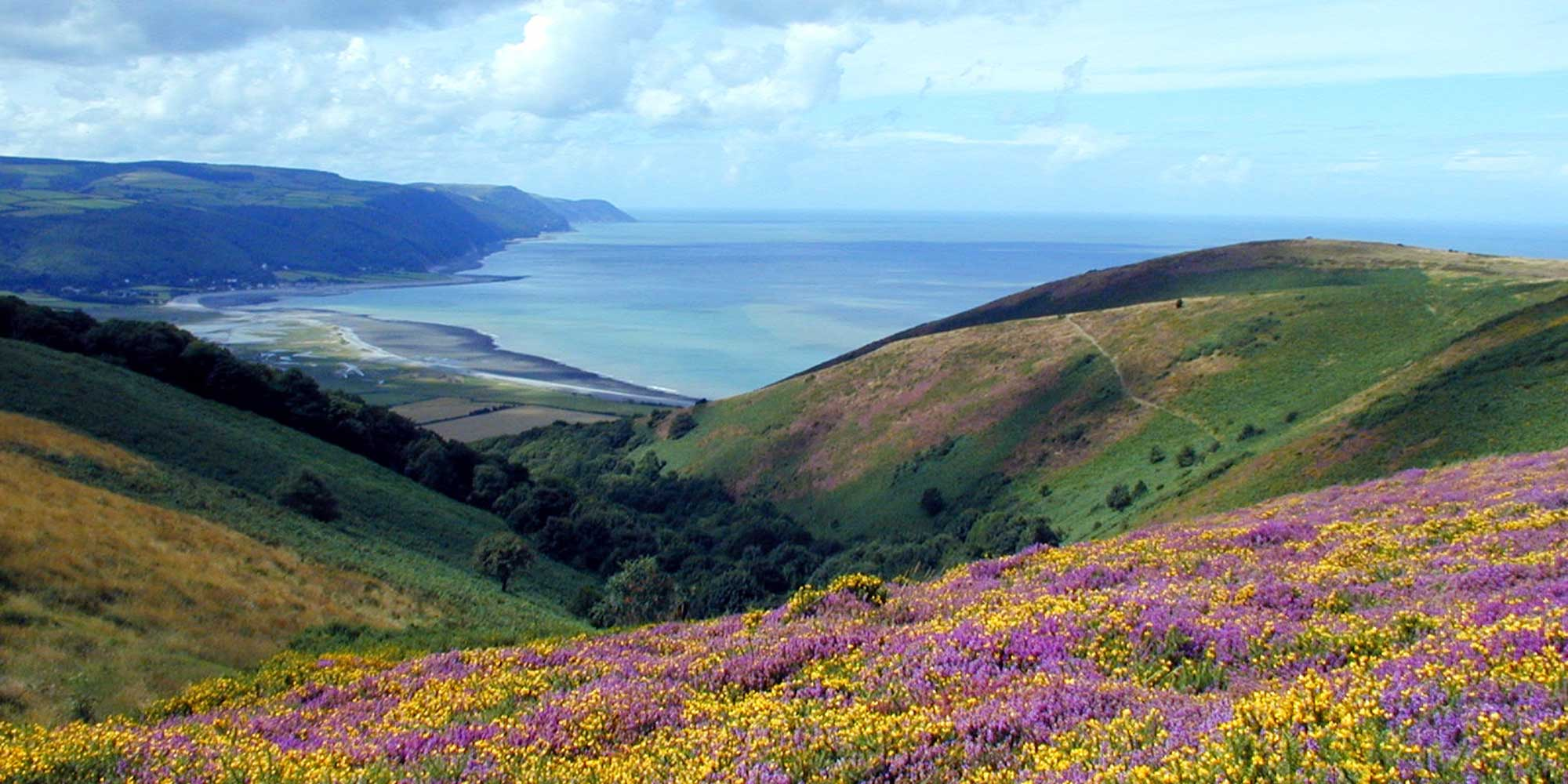 ex-porlock-bay National Parks UK