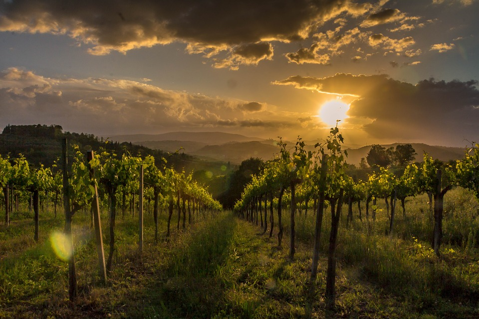 tuscany-Pixaby